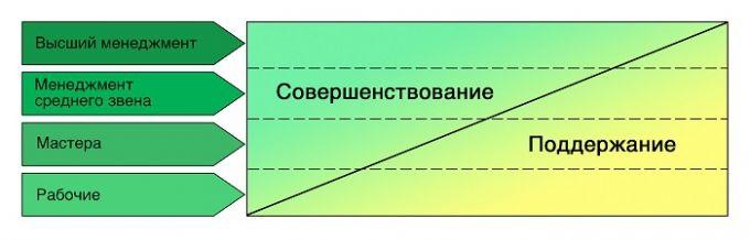Соотношение деятельности по поддержанию и совершенствованию у разных уровней сотрудников
